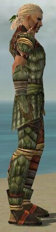 File:Ranger Elite Drakescale Armor M gray side.jpg