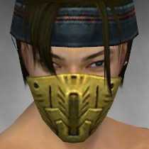 File:Assassin Imperial Armor M dyed head front.jpg