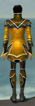 Elementalist Shing Jea Armor M dyed back