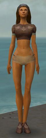 File:Dervish Sunspear Armor F gray chest feet front.jpg