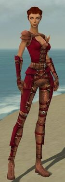Ranger Ascalon Armor F dyed front