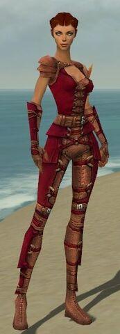 File:Ranger Ascalon Armor F dyed front.jpg