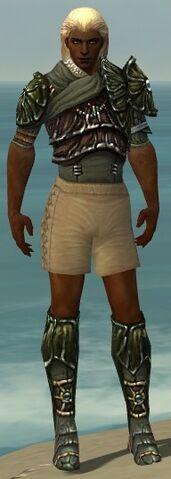 File:Ranger Elite Luxon Armor M gray chest feet front.jpg