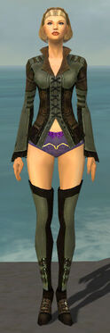 Mesmer Istani Armor F gray chest feet front