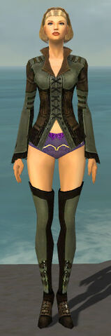 File:Mesmer Istani Armor F gray chest feet front.jpg