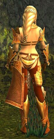 File:Jora Armor Norn Back.jpg