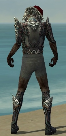 File:Necromancer Monument Armor M gray chest feet back.jpg