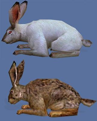 File:Rabbits.jpg