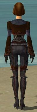 Mesmer Elite Rogue Armor F dyed back