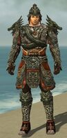 Warrior Elite Canthan Armor M gray front
