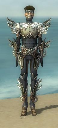 File:Assassin Asuran Armor M gray front.jpg