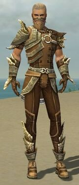 Ranger Asuran Armor M gray front