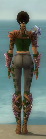 File:Ranger Drakescale Armor F dyed back.jpg