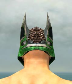 File:Warrior Elite Kurzick Armor M dyed head back.jpg