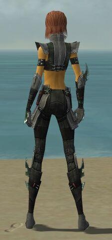 File:Assassin Luxon Armor F gray back.jpg