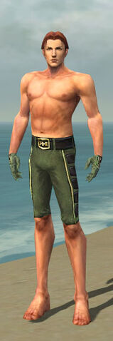 File:Mesmer Canthan Armor M gray arms legs front.jpg