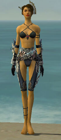 File:Assassin Asuran Armor F gray arms legs front.jpg