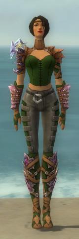 File:Ranger Drakescale Armor F dyed front.jpg
