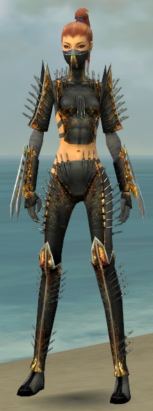 the exotic armor of - photo #20