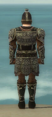 Warrior Canthan Armor M gray back