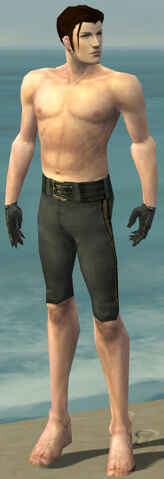 File:Mesmer Elite Noble Armor M gray arms legs front.jpg