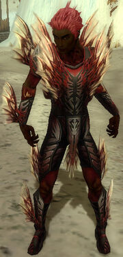 Necromancer Primeval Armor M dyed front
