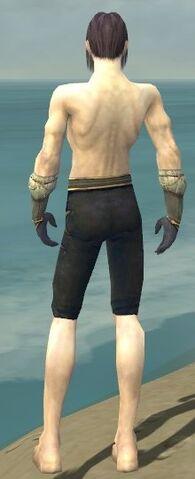 File:Elementalist Norn Armor M gray arms legs back.jpg