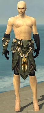Ritualist Elite Kurzick Armor M gray arms legs front