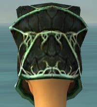 File:Warrior Elite Luxon Armor F dyed head back.jpg