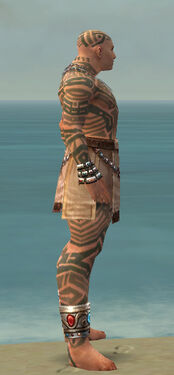 Monk Labyrinthine Armor M gray side