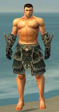 File:Warrior Elite Luxon Armor M gray arms legs front.jpg