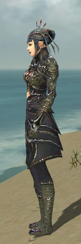 File:Necromancer Elite Necrotic Armor F gray side.jpg