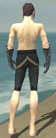File:Elementalist Ascalon Armor M gray arms legs back.jpg