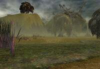 Kryta swamp