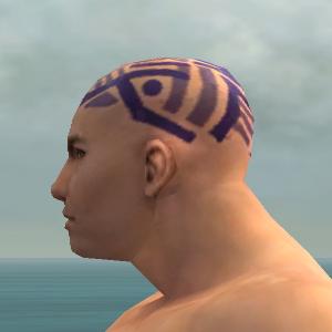 File:Monk Labyrinthine Armor M dyed head side.jpg