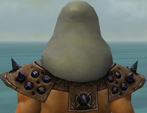 File:Dervish Obsidian Armor M gray head back.jpg