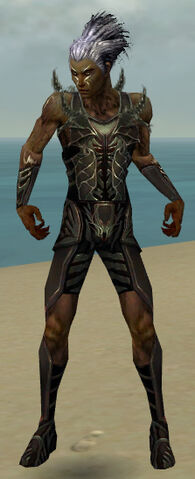 File:Necromancer Istani Armor M gray front.jpg