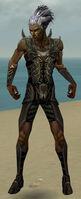 Necromancer Istani Armor M gray front