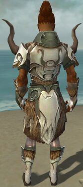 Paragon Norn Armor M gray back