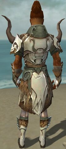 File:Paragon Norn Armor M gray back.jpg