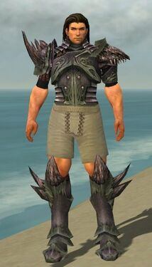 Warrior Primeval Armor M gray chest feet front