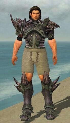 File:Warrior Primeval Armor M gray chest feet front.jpg