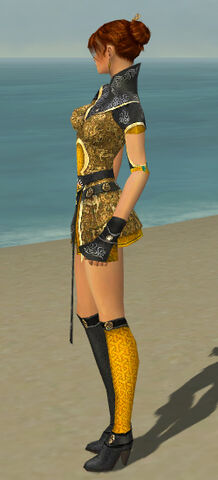 File:Elementalist Canthan Armor F dyed side.jpg