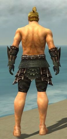 File:Warrior Elite Dragon Armor M gray arms legs back.jpg