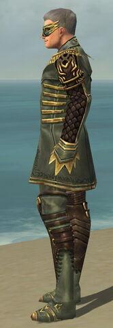 File:Mesmer Vabbian Armor M gray side.jpg