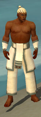 Monk Sacred Armor M gray arms legs front