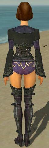 File:Mesmer Elite Rogue Armor F gray chest feet back.jpg