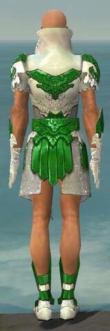File:Paragon Elonian Armor M dyed back.jpg