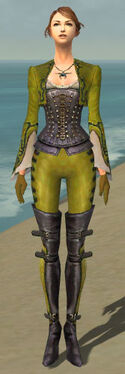 Mesmer Rogue Armor F dyed front