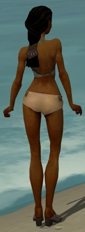 File:Dervish Asuran Armor F gray chest feet back.jpg